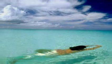 Syrena czyli Morska Małpa
