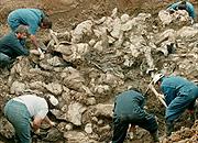 Serbia: ruszył pierwszy proces za masakrę w Srebrenicy