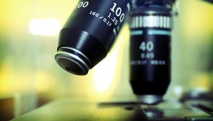 Medycyna, kamstwa i nierzetelne badania