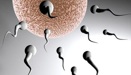 Sperma - nowy spos�b na wyg�adzanie zmarszczek?