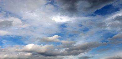 Dżdżownice pomogą poznać historię klimatu