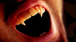 Krwawa historia wampirów