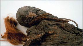 Tajemnice starożytnych torfowisk