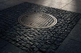 Makabryczne odkrycie w studzience kanalizacyjnej