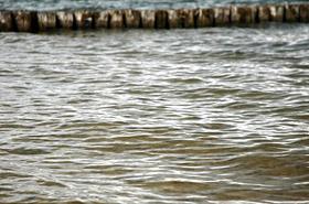 Prokuratura: różny opis szczątków wyłowionych z jeziora przez 15 laty