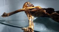 Znaleziono najstarsze próbki ludzkiej krwi