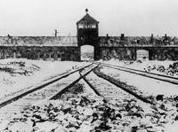 Zatrzymano trzech byłych strażników z KL Auschwitz