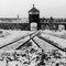 Zatrzymano trzech by�ych stra�nik�w z KL Auschwitz