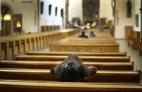 Watykan: liczba katolik�w na �wiecie wzros�a o 12 proc.