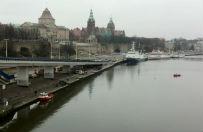 Alarm w Szczecinie. Prawie ca�e miasto zagro�one w�cieklizn�