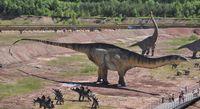 Amficelias - najd�u�szy znany dinozaur