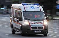 Pięcioro zabitych w wypadku koło Bełchatowa. Opel wbił się w drzewo