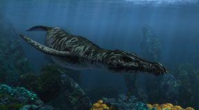 Prehistoryczne morskie bestie