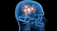 Samotność zapisana w mózgu