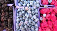 Dodatki do owoców i warzyw