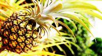 Ananas o smaku kokosa