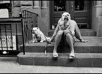 Elliott Erwitt w Leica Gallery