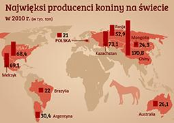 Polska produkuje najwięcej koniny w UE