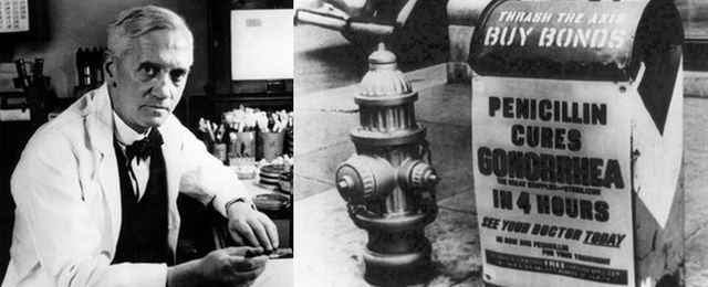Alexander Fleming - odkrywca penicyliny