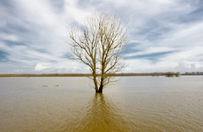 Hydrolog: nie widzimy wielkich powodzi