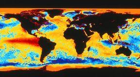 Winni globalnego ocieplenia?