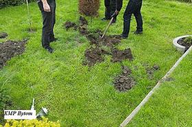 """Nietypowe """"wykopki"""": policja znalazła na działce..."""