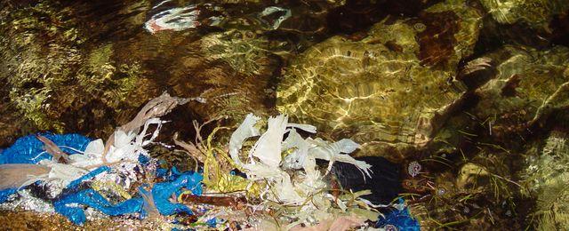 Straszny śmietnik na dnie morza