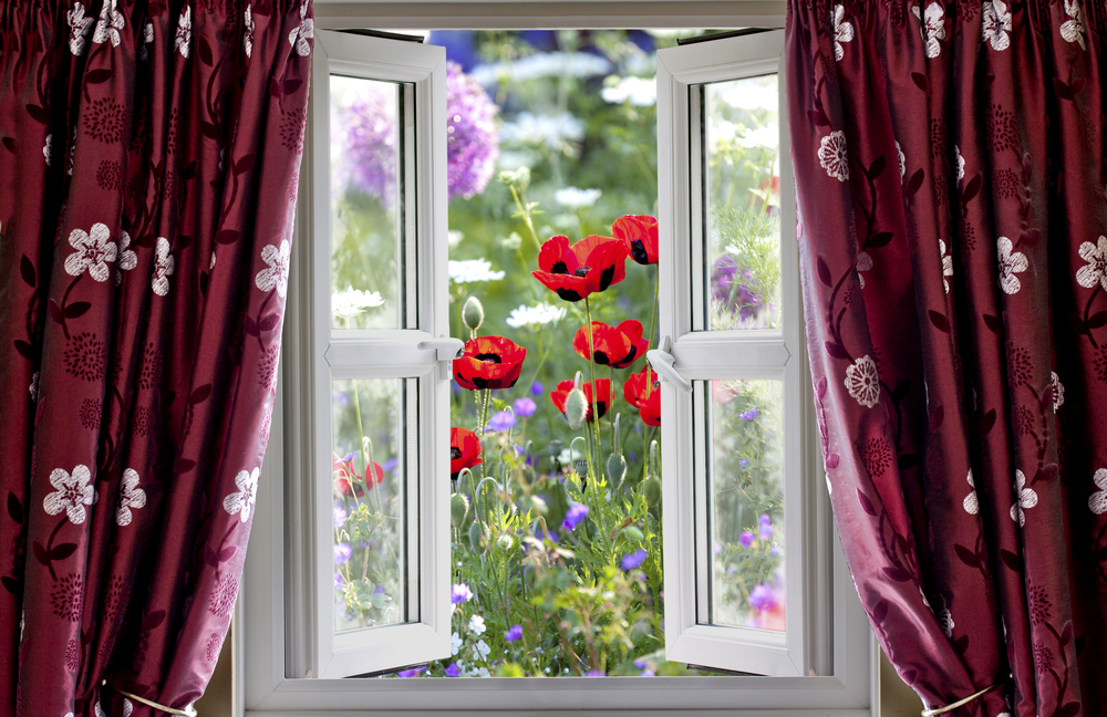Wakacyjne dekoracje okienne wp dom - La finestra sul giardino ...
