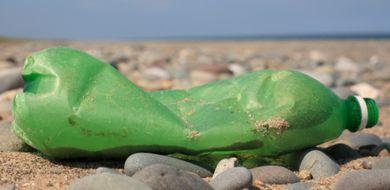 Śmieci w morzu są siedliskiem groźnych ...