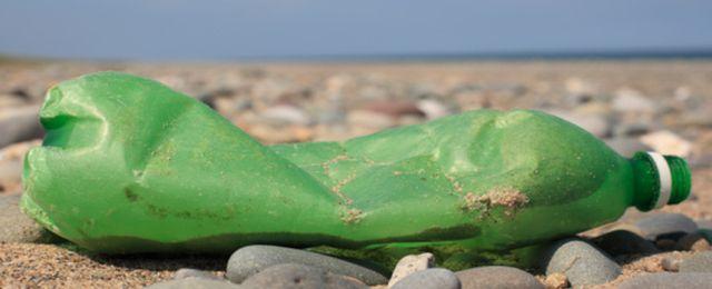 Śmieci w morzu są siedliskiem groźnych bakterii