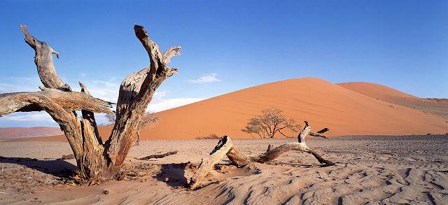 Nadmorska pustynia Namib, Namibia