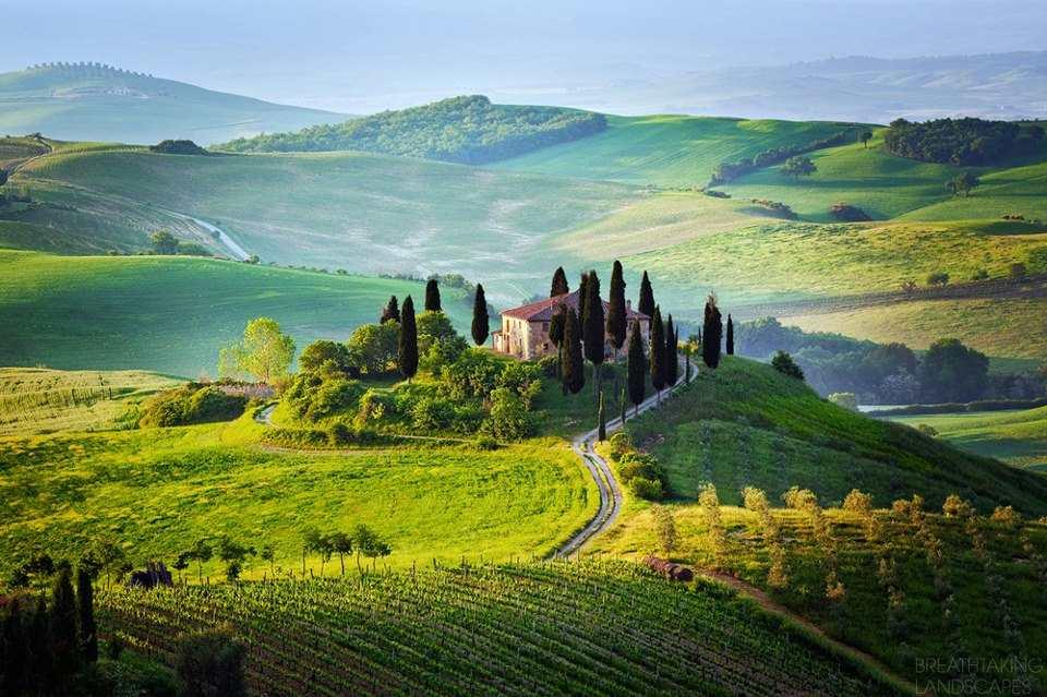 Znalezione obrazy dla zapytania winnica toskania