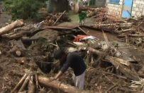 Tajfun Halong dotar� do jednej wysp Japonii; 26 rannych