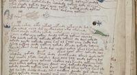 Manuskrypt Voynicha