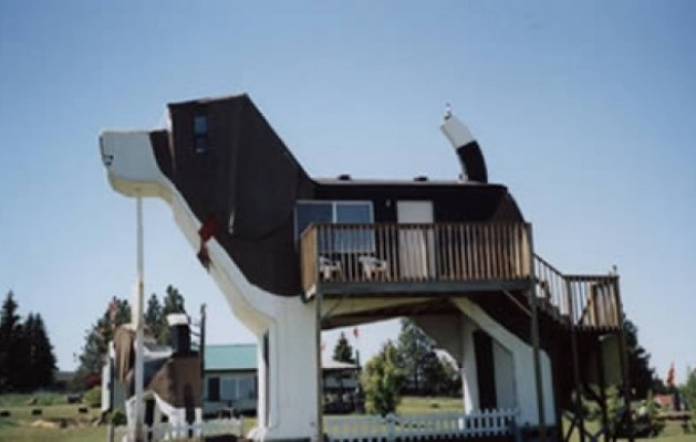 Dog Bark Park Inn Idaho Newhairstylesformen2014 Com