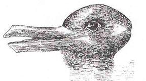 Zadziwiające iluzje optyczne