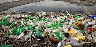Wykorzystują śmieci do stworzenia leku