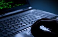 Szef MAEA ujawnia: dwa-trzy lata temu by� cyberatak na elektrowni� atomow�