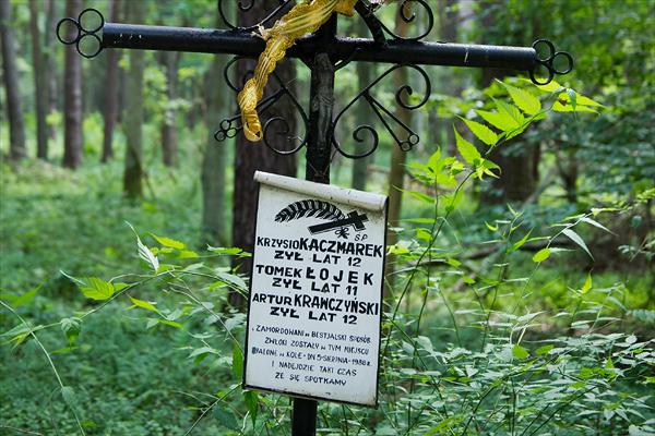 Pomnik w lesie, w miejscu gdzie w sierpniu 1988 r. Mariusz Trynkiewicz spalił zwłoki trzech chłopców
