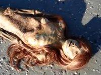Martwa syrena wyrzucona na plażę? To nagranie wzbudziło wielką sensację