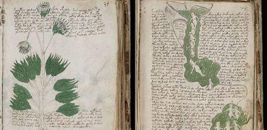 Próba rozszyfrowania manuskryptu Voynicha