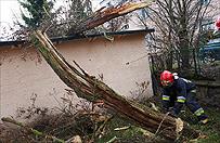 Za�amanie pogody w Polsce. Silny wiatr parali�uje kraj