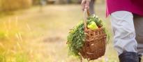 Producenci żywności oszukiwali Polaków. Posypią się srogie kary