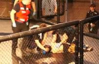 �ledztwo ws. walki 12-latk�w w klatce podczas gali MMA umorzone
