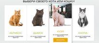 Kot do kredytu mieszkaniowego. Takie rzeczy tylko w Rosji