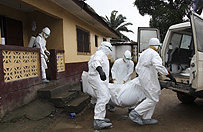 Lekarze bez Granic: �wiat przegrywa batali� z Ebol�