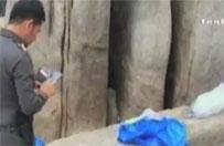 Brutalne morderstwo brytyjskich turyst�w w Tajlandii