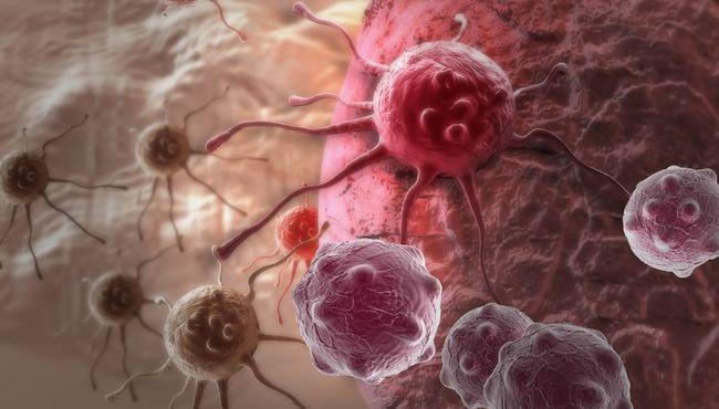 Produkty, kt�re wspomagaj� rozw�j raka