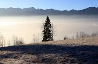 W Zakopanem spad� pierwszy tej jesieni �nieg