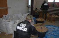 """Stra� graniczna odkry�a nielegaln� fabryk� tytoniu. """"Chcia� sprzeda� 1,5 tony suszu"""""""
